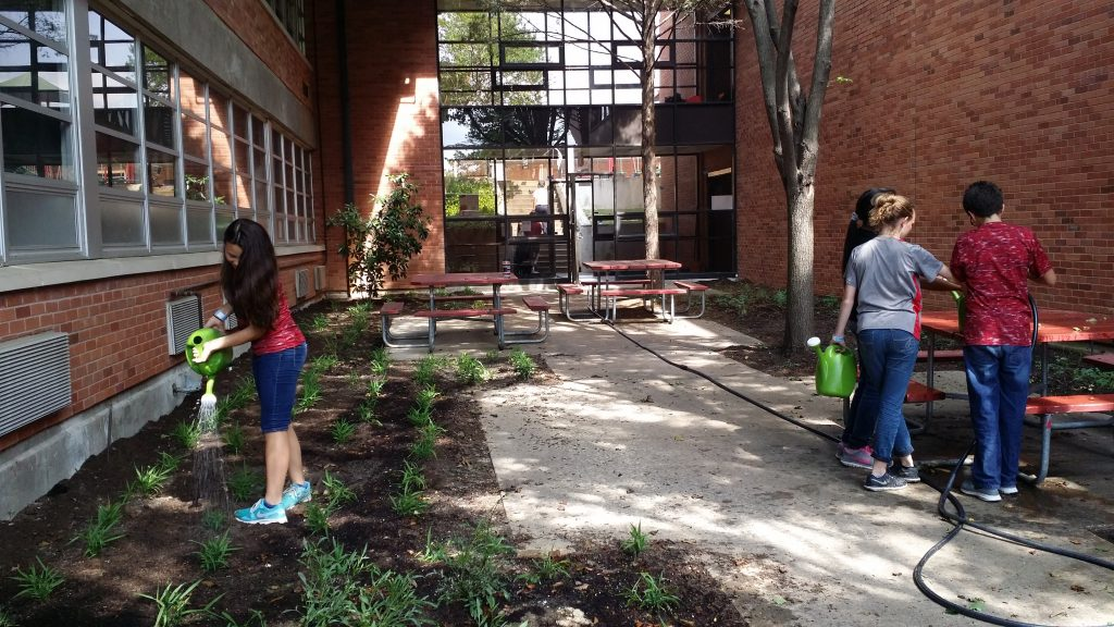 St. Elizabeth of Hungary Catholic School Monarch Butterfly Rescue Grant Program May Update