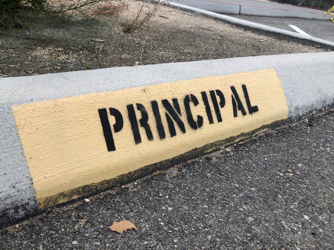Perspectives from Matt Grosser: 2019 National Distinguished Principal